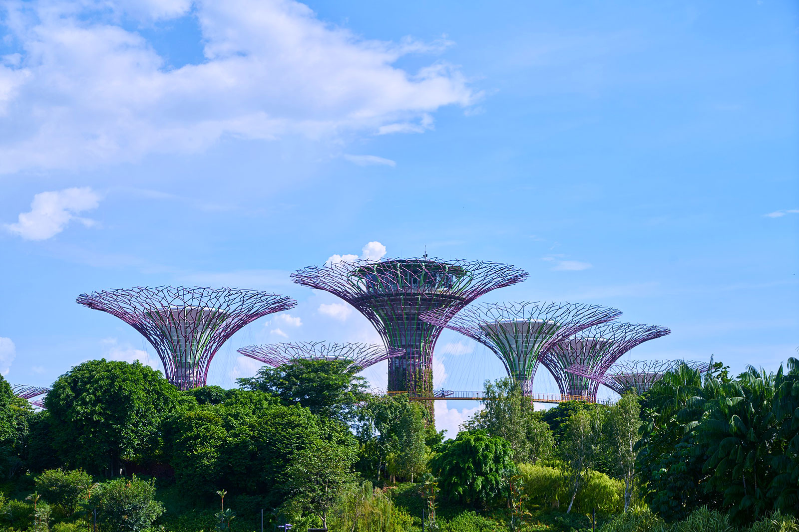 Singapore through the eyes of Kalyra