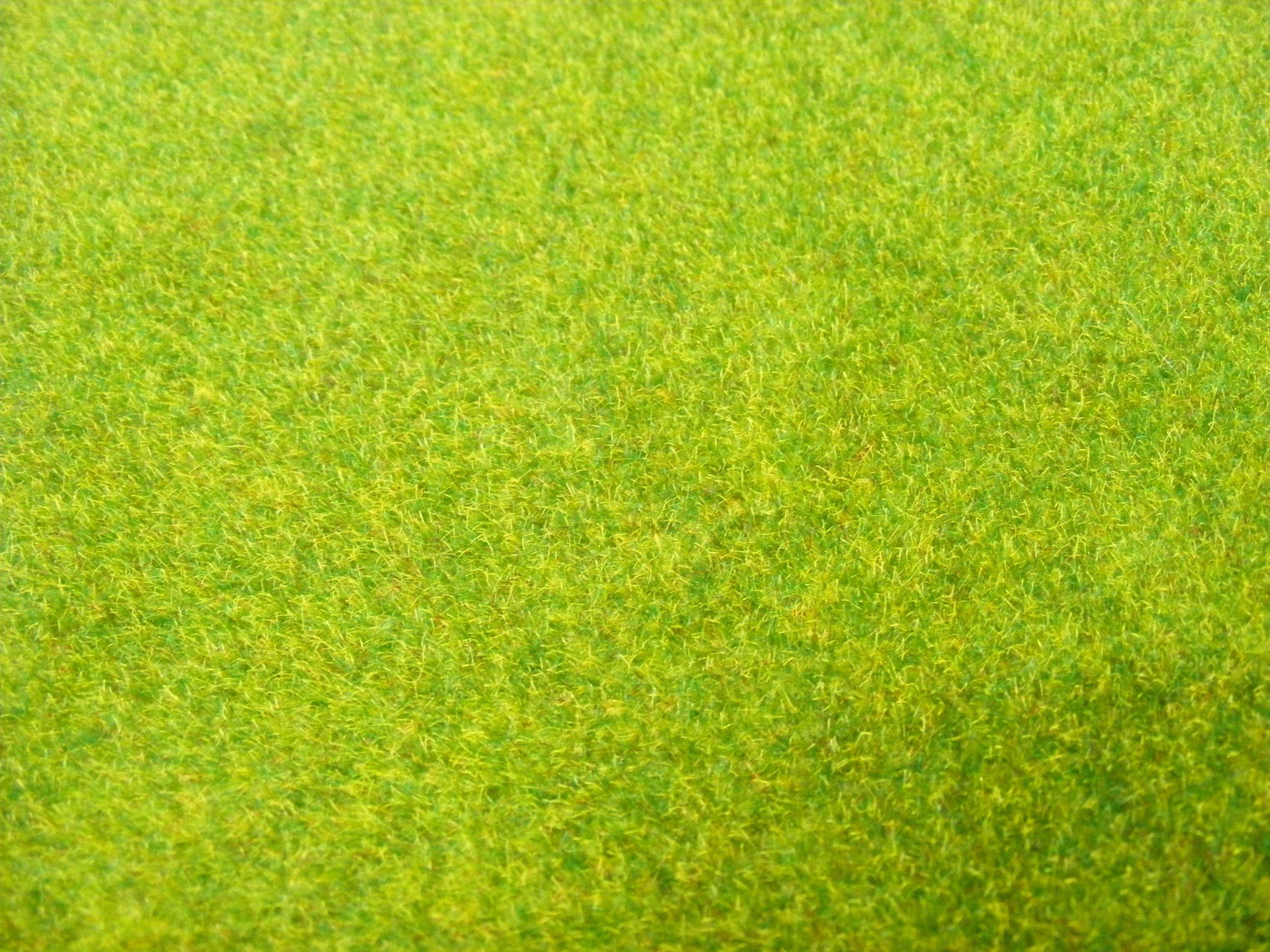 /var/www/html/wp-content/uploads/2018/09/38058601-grass-texture