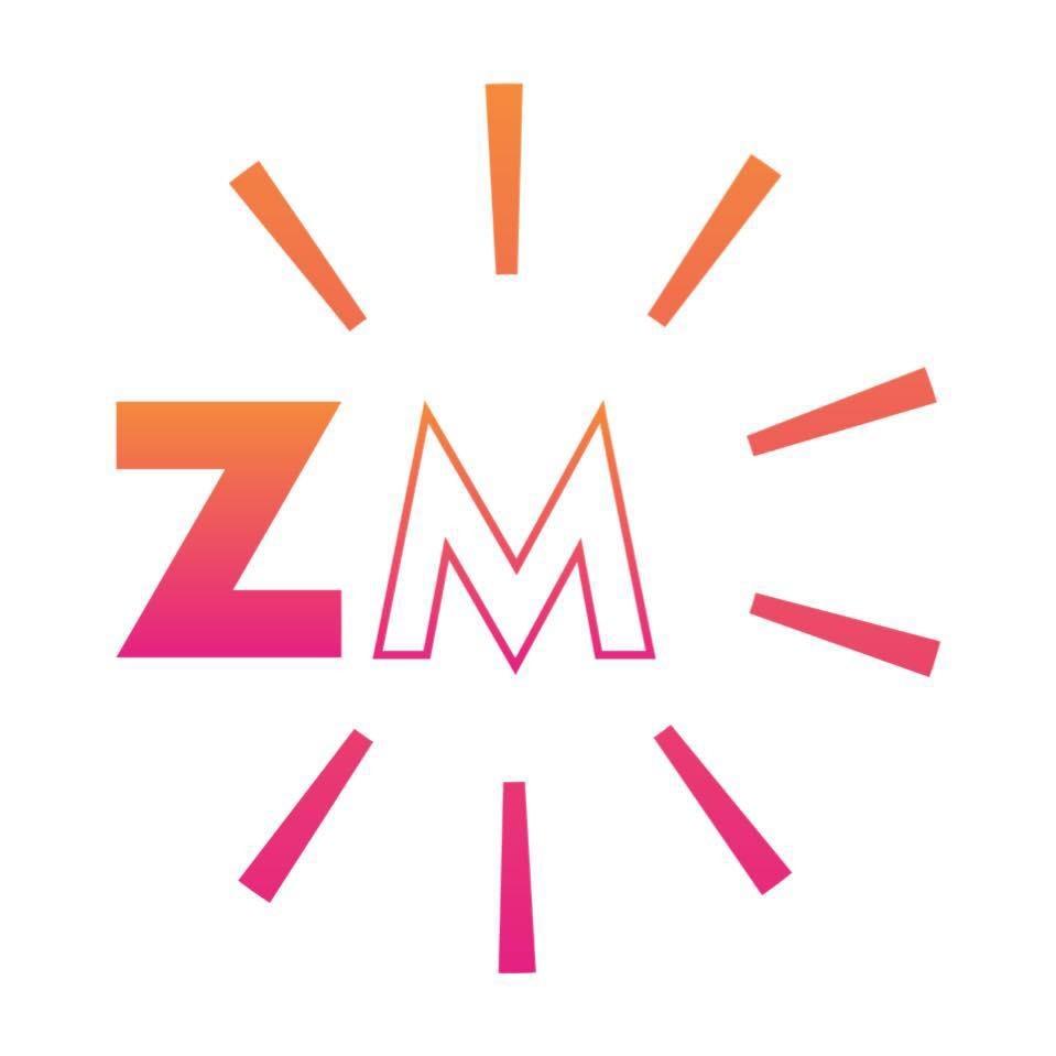 Zouk-Vice-Miami-Brazilian-Zouk-Logo