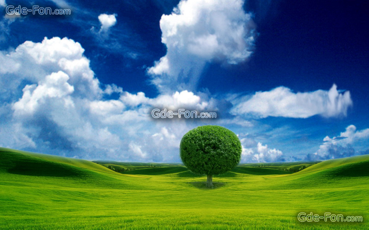 157709_(www.Gde-Fon.com)