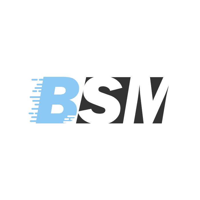 BSM-Logo