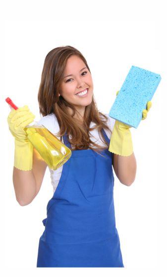 essex-elite-cleaner