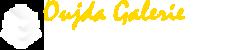oga-logo