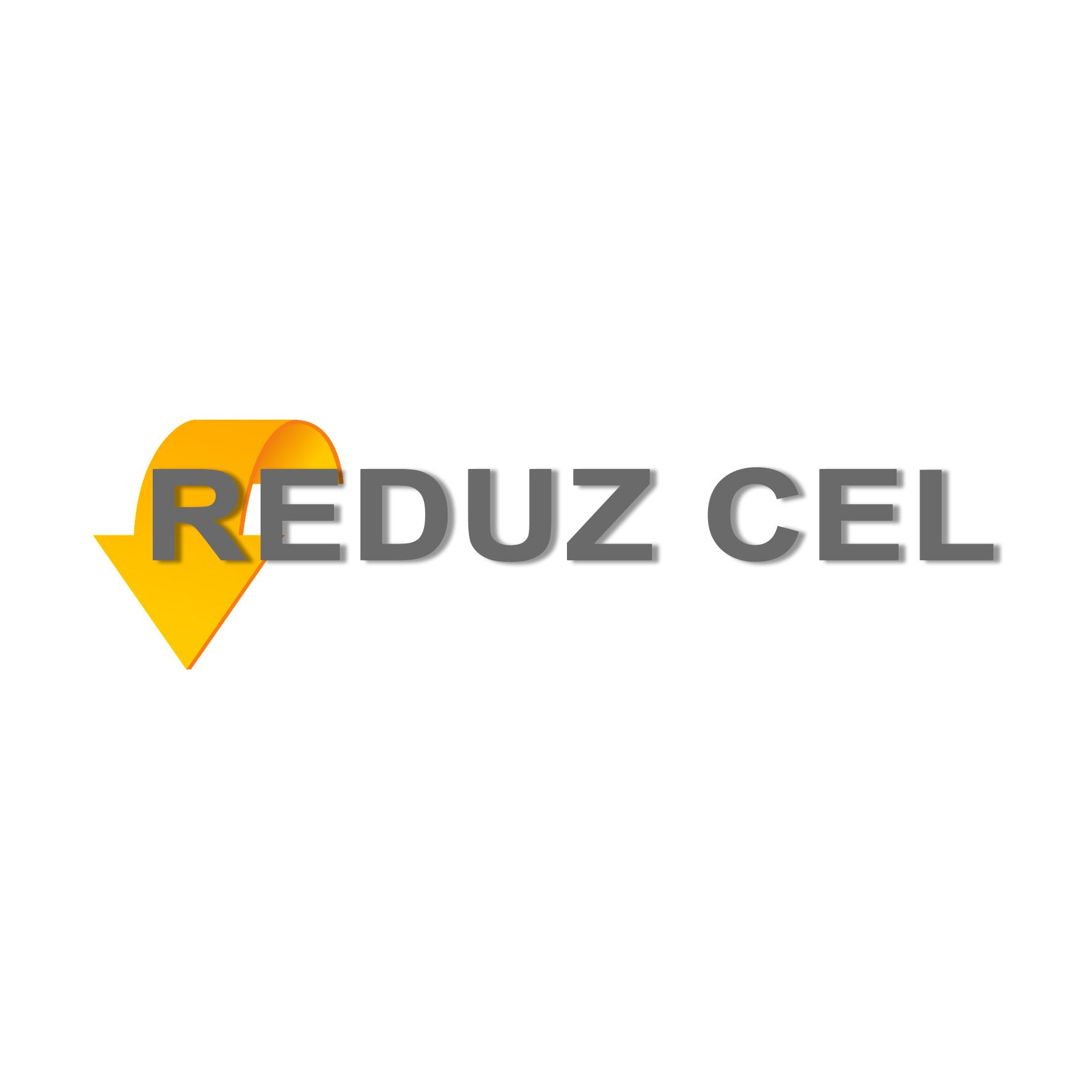REDUZ-1