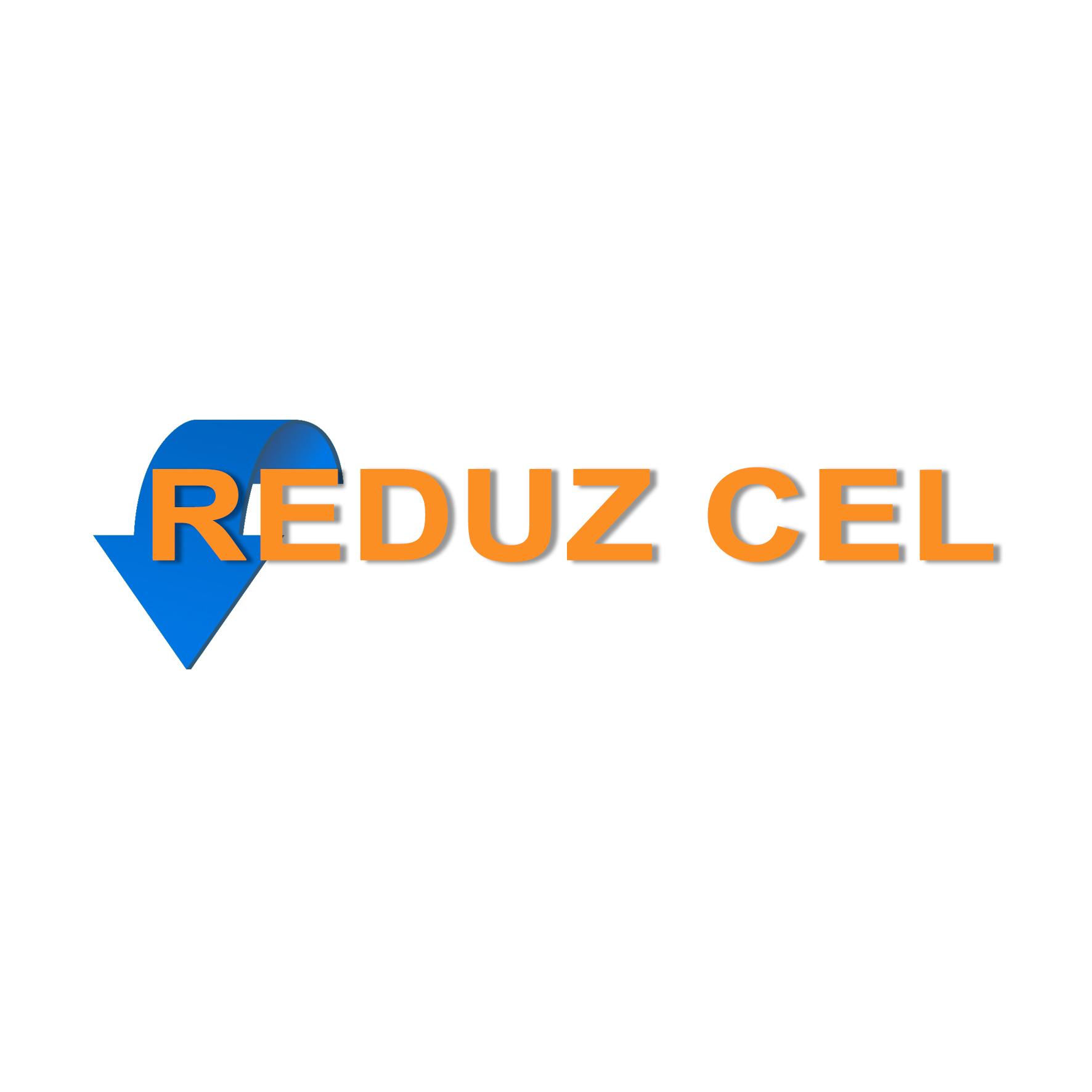 REDUZ-2