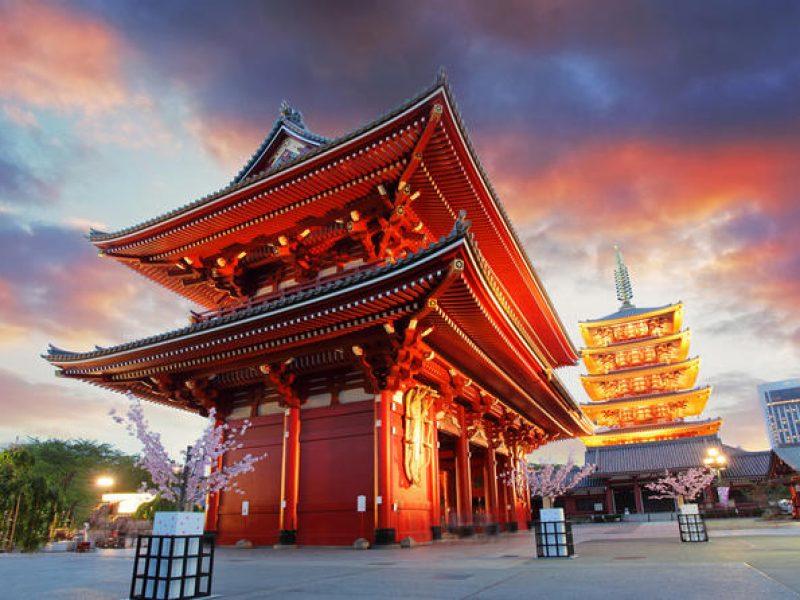 tokyo-morning-tour-meiji-shrine-senso-ji-temple-and-ginza-shopping-in-tokyo-168307-800x600