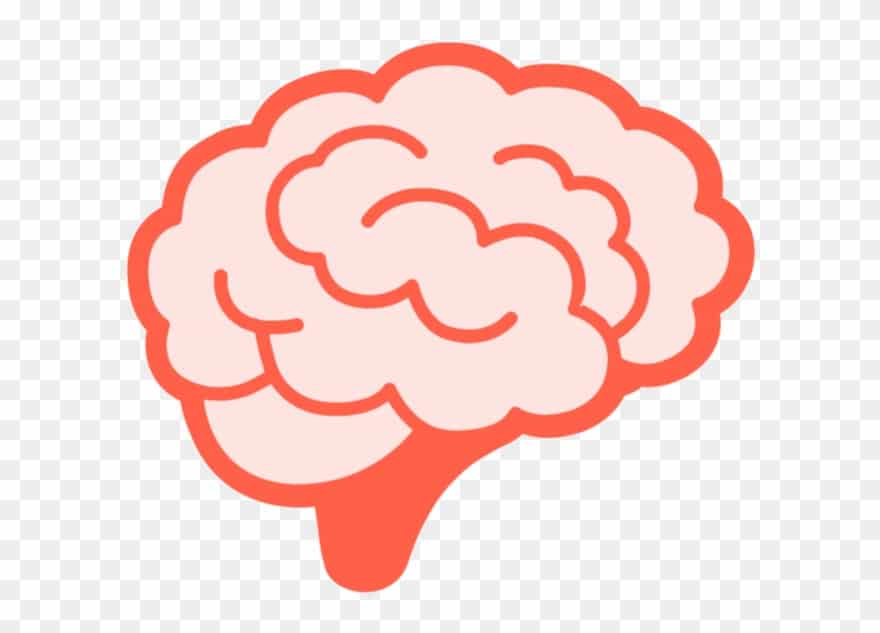 5529206-brains-clipart-animated-gif-brain-png-download-1413437-brainpng-880_633_preview