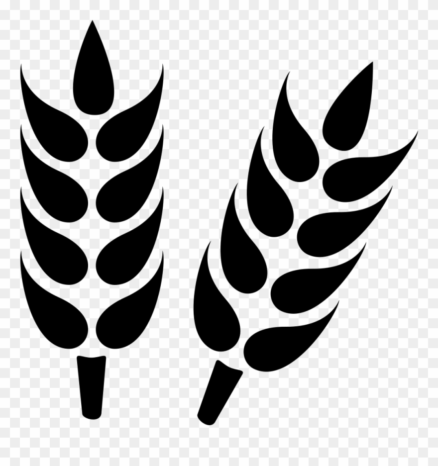 33-333679_close-up-svg-png-icon-free-download-agriculture