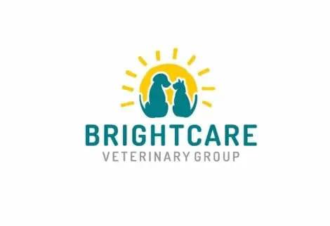 brightcare animal neurology