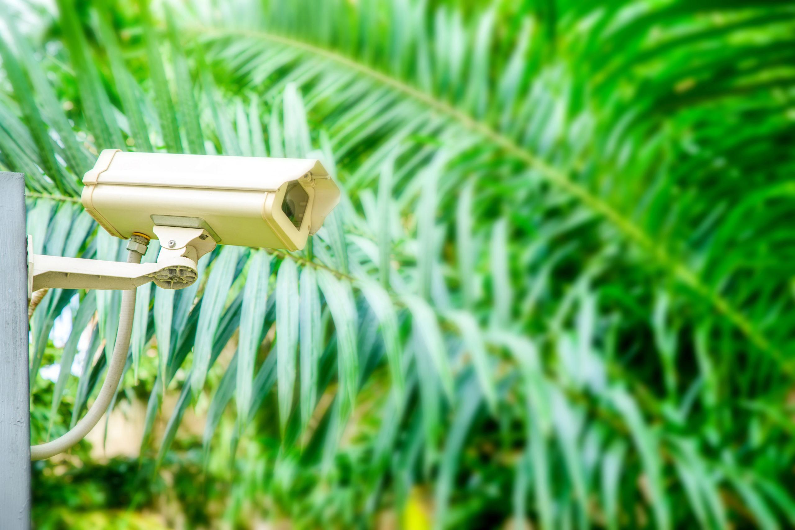 CCTV-scaled